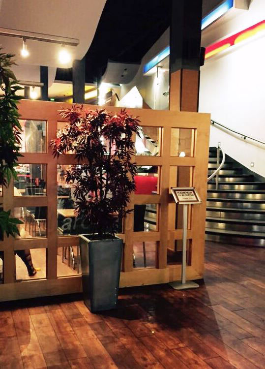 View of Japanese Acer and staircase in Aroma restaurant